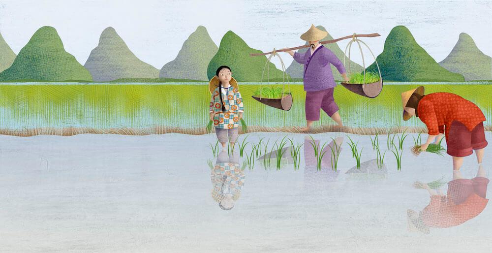 Ilustración campo de arroz